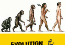 Evolution - allgyan